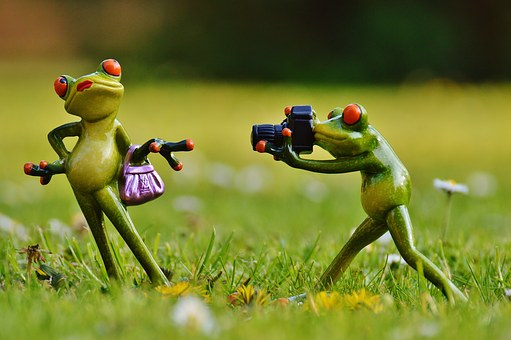 froggies posing