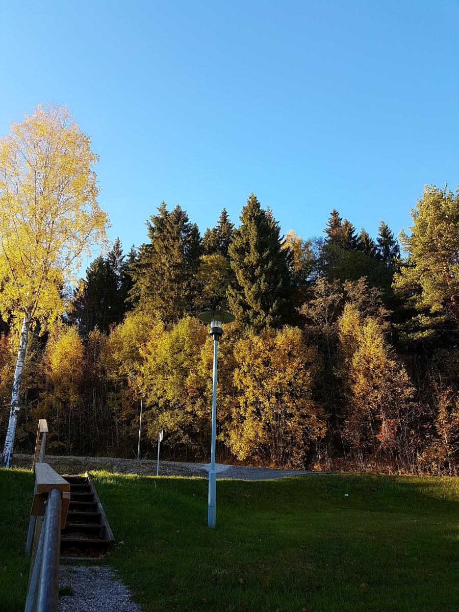 swedenpicture_autumn