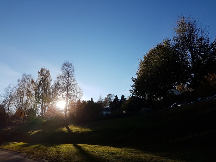 swedenpicture_autumn2
