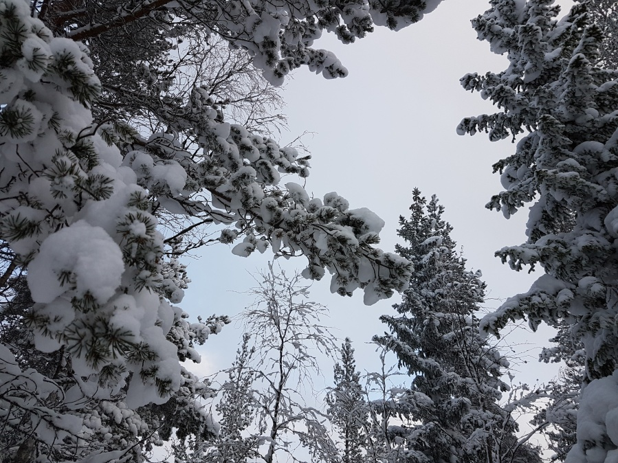wintersweden13