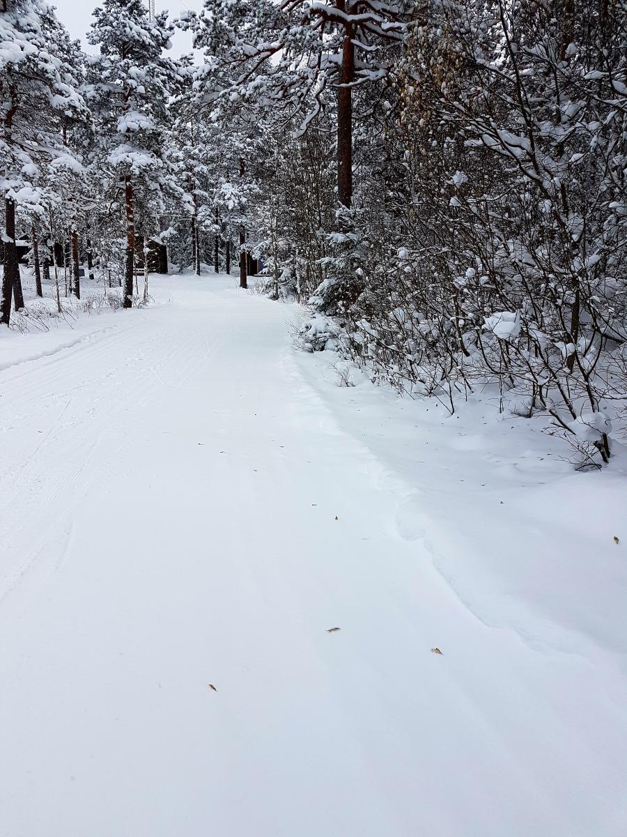 wintersweden8